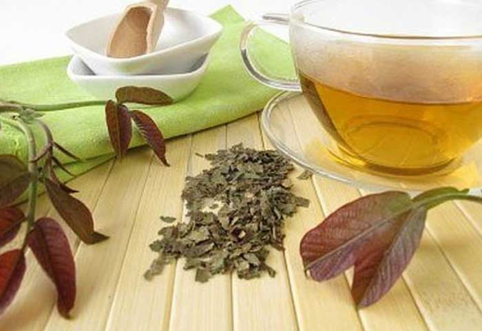 Use Walnut Leaves Tea For Hair! It Has Spectacular Effects!