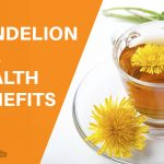 13 Amazing Benefits of Dandelion Tea for Your Health and Skin