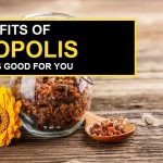 Propolis Health Benefits – Why It's Good for You