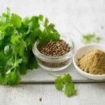 20 Best Health Benefits Of Coriander Seeds