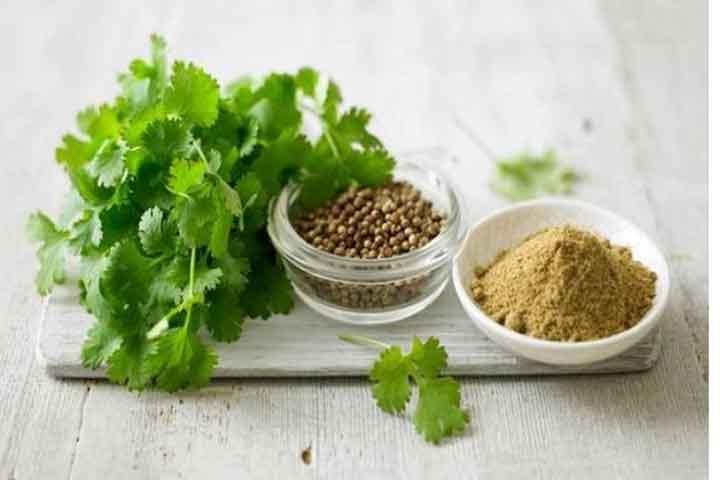 20 Best Health Benefits Of Coriander Seeds