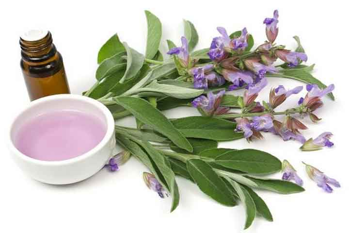 Using Clary Sage Oil