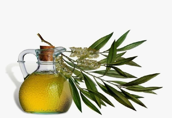 Using Tea Tree Oil