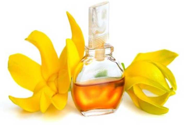 Using Ylang Ylang Oil