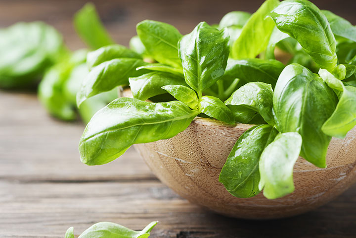 basil juice recipe for kidney stones