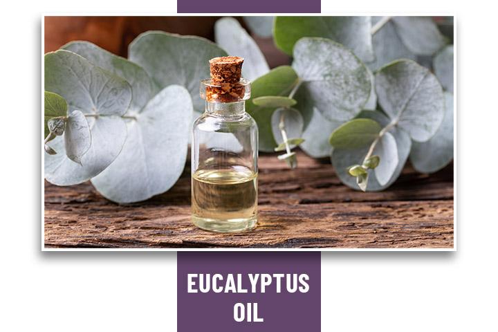 Eucalyptus Oil for Headache