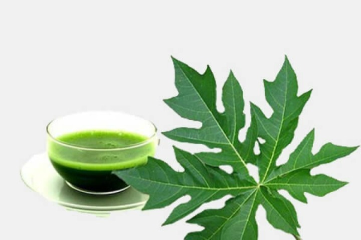 20 Surprising Benefits Of Papaya Leaf Juice