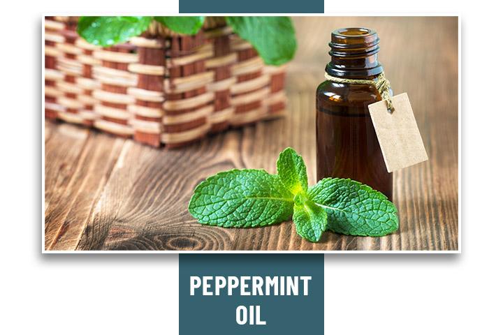 Peppermint Oil for Headache