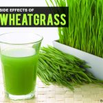 12 Side Effects Of Wheatgrass You Should Be Aware of