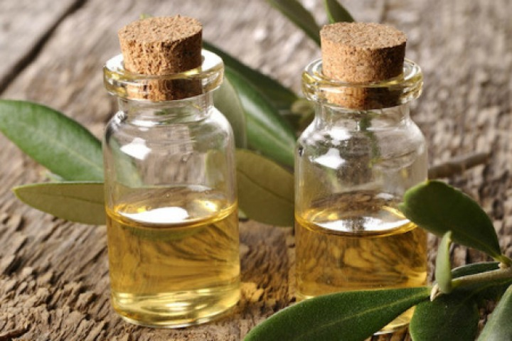 Treating Ringworm With Tea Tree Oil
