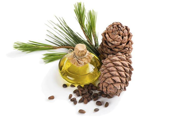 cedarwood essential oil for hair loss