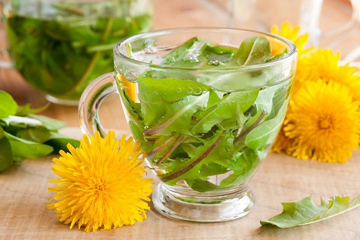 dandelion leaf tea for weight loss