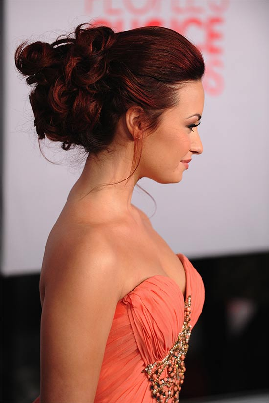 Demi Lovato messy Updo for long hair