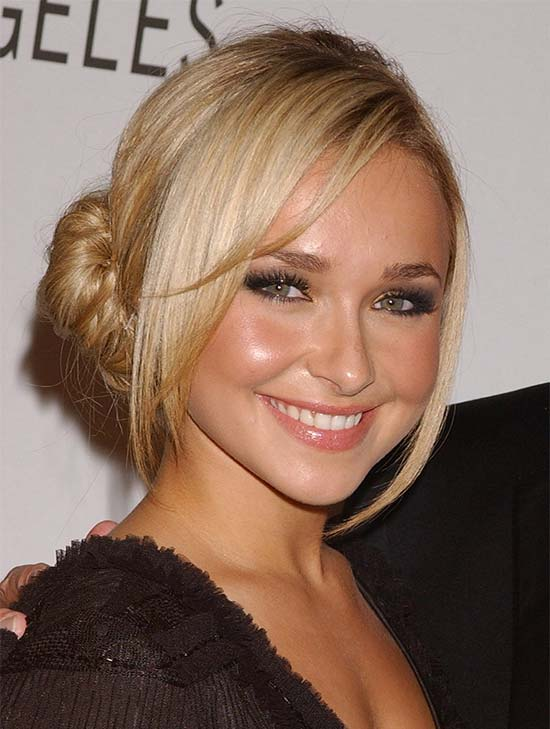 Hayden Panettiere updo for long hair