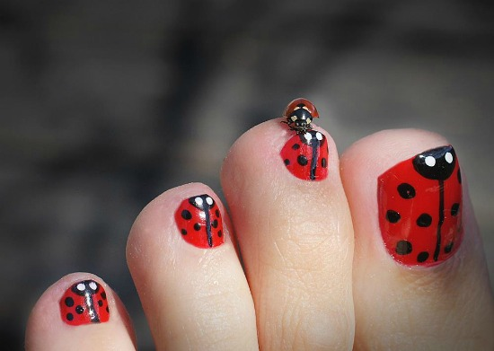 Ladybug toe nail Art Design