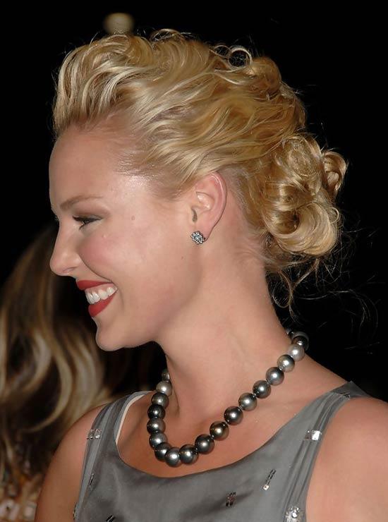 Katherine Heigl Chignon hairstyle