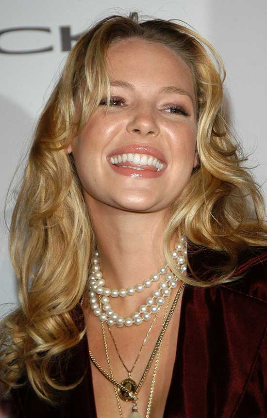 Katherine Heigl with long blonde hair