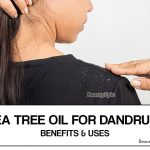 Tea Tree Oil for Dandruff: Best Home Treatments That Actually Work