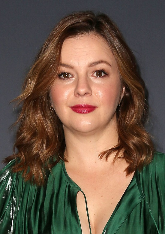 Amber Tamblyn Medium Layered Hairstyle