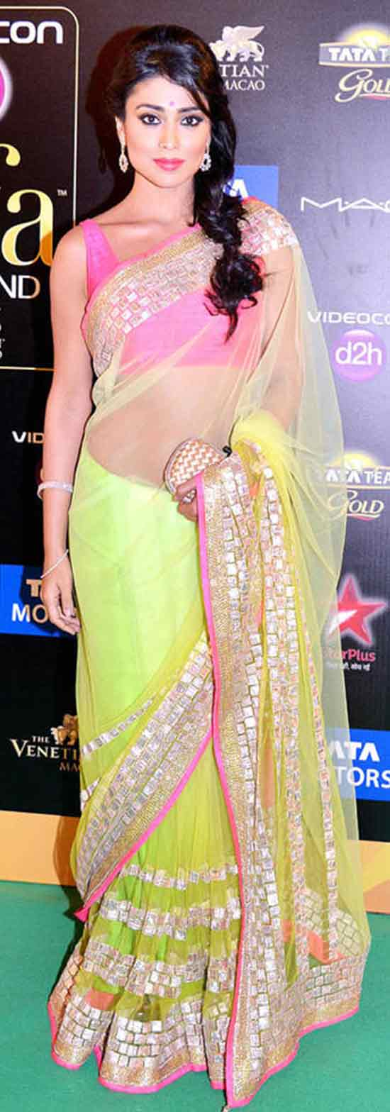 Shriya-Saran-In-Green-Net-Saree