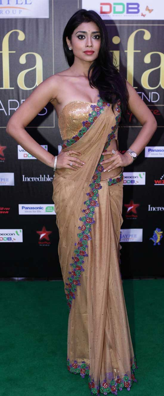 Shriya-Saran-In-Net-Saree-With-Croset-Blouse