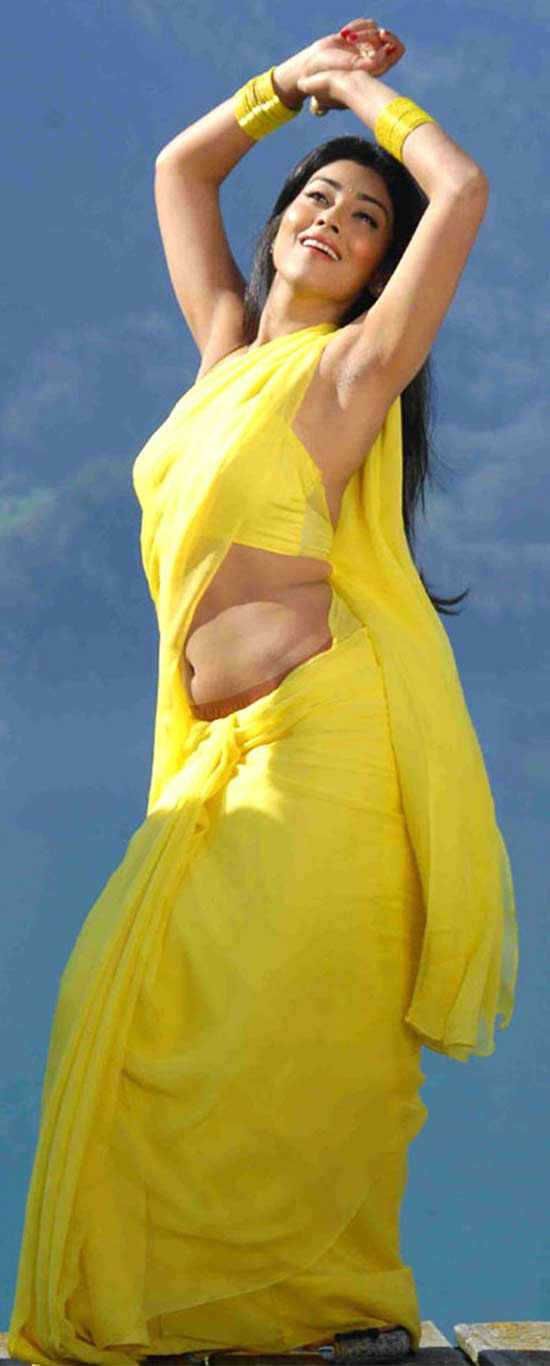 Shriya-Saran-In-Yellow-Saree