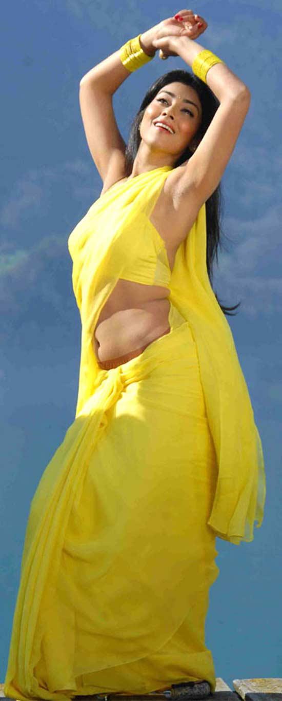 Shriya-Saran-In-Yellow-Saree
