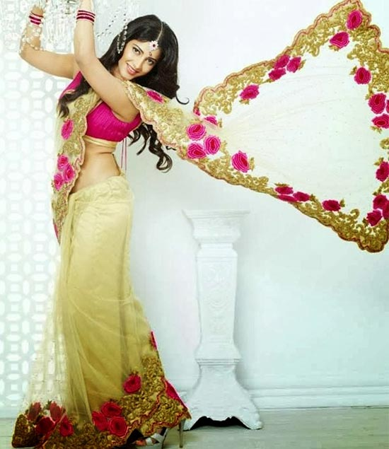 Shruti-Hassan-In-Cream-Net-Saree-With-Embroidery-Border