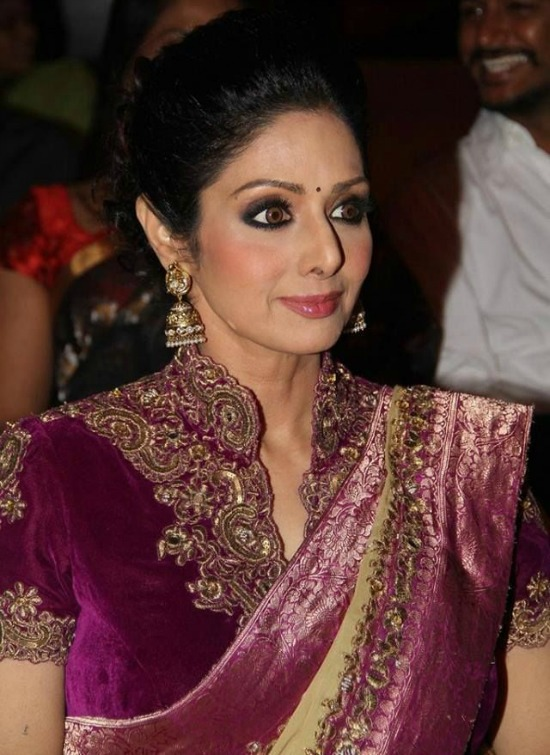 Sridevi In Magenta Velvet Embroidery High Neck Blouse