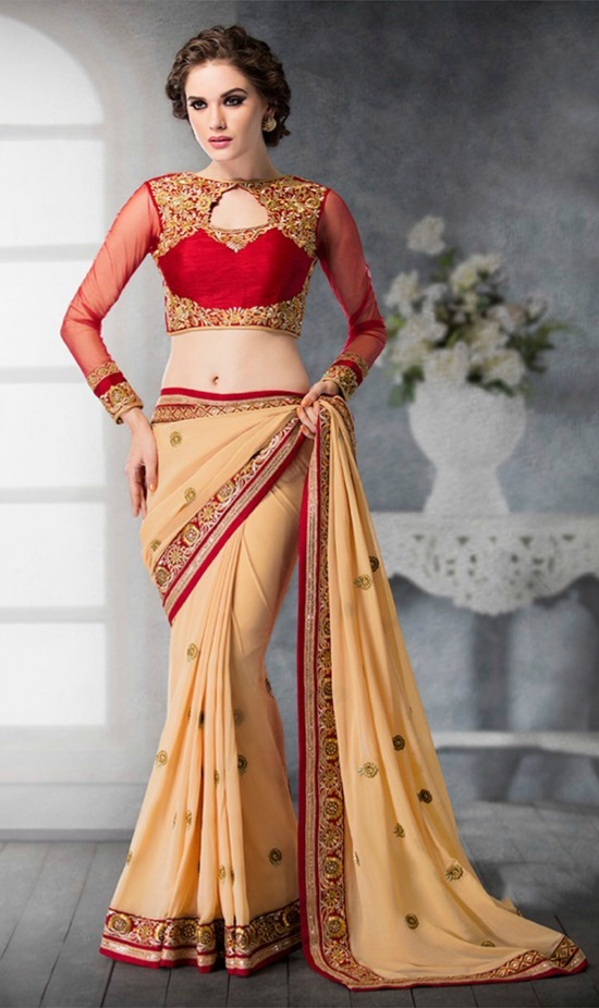 Red and Cream Georgette and Dhupian Silk Saree with Embroidered Full Net Sleeves
