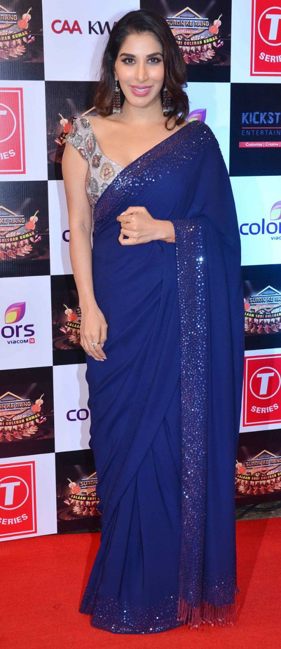 Sophie Choudry Indigo Blue Sari With A Grey Sequinned Blouse