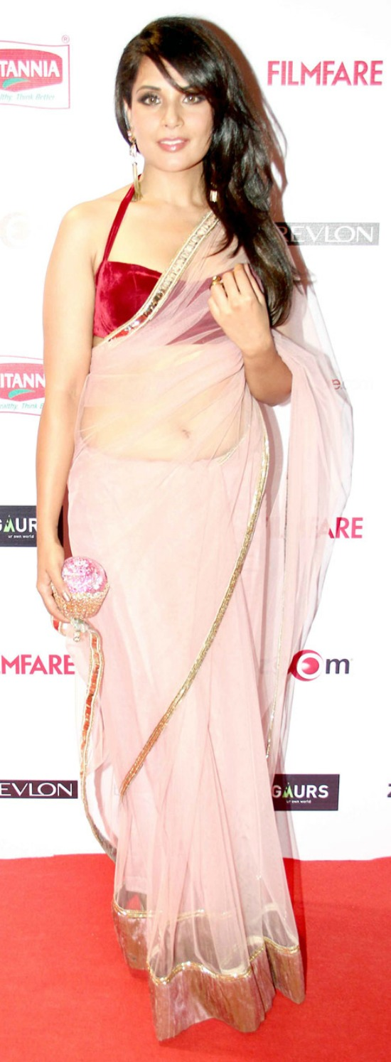 Richa Chadda In White And Gold Net Saree With Velvet Blouse