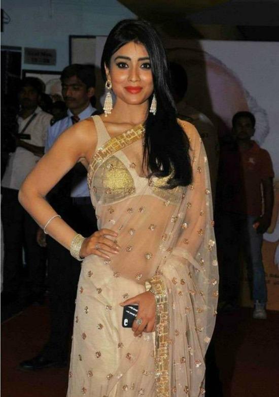 Shriya Saran In white And Gold Net Saree