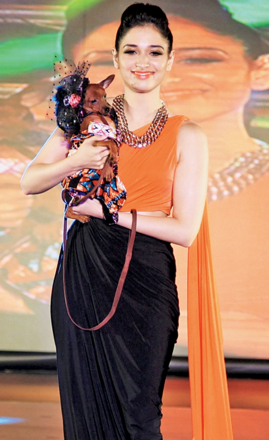 Tamanna Bhatia In Black And Orange Saree Gown