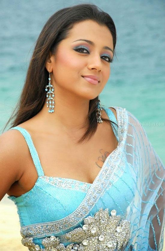 Trisha In Net Saree
