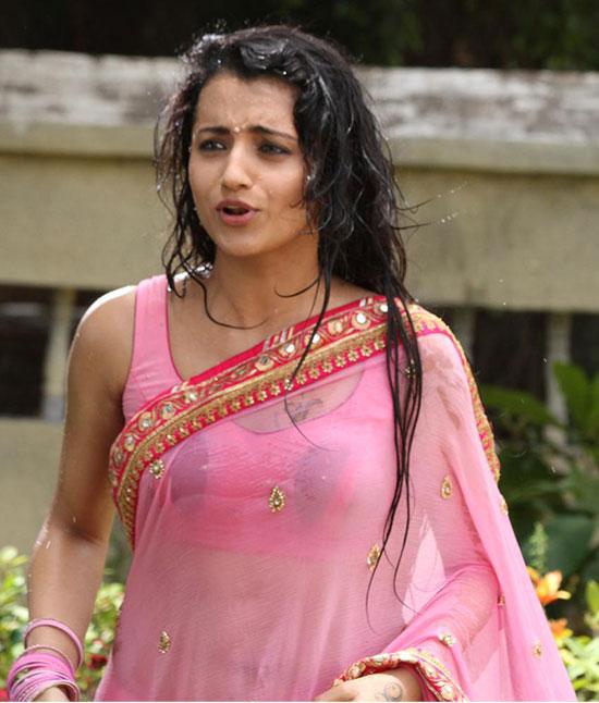 Trisha In White Net Saree