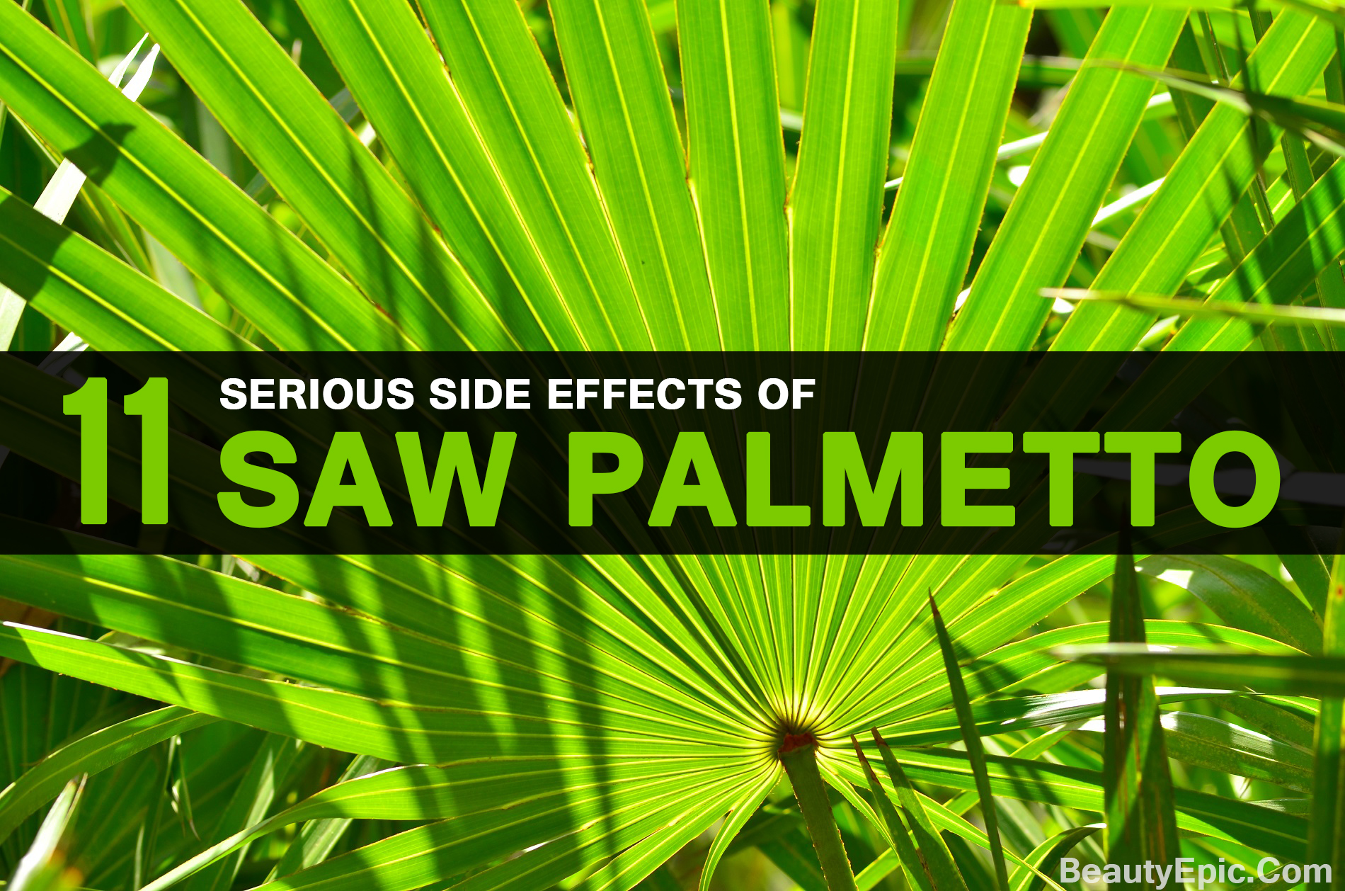 Top 11 Hidden Side Effects Of Saw Palmetto You Didn T Know