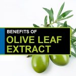 Top 15 Benefits and Uses of Olive Leaf Extract
