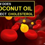 How Does Coconut Oil Affect Cholesterol?
