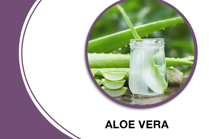 Aloe Vera for Thick Hair