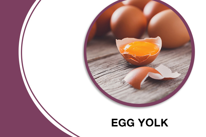 Egg Yolk for Thick Hair