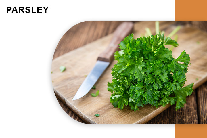 Parsley for Varicose Veins