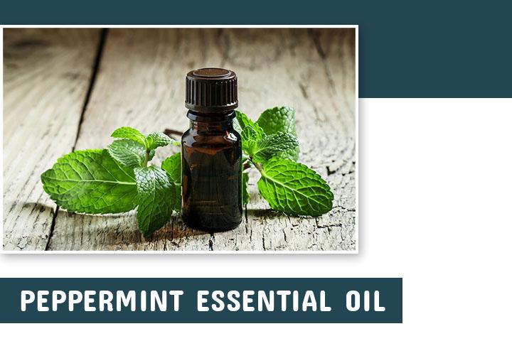Peppermint oil for hair growth