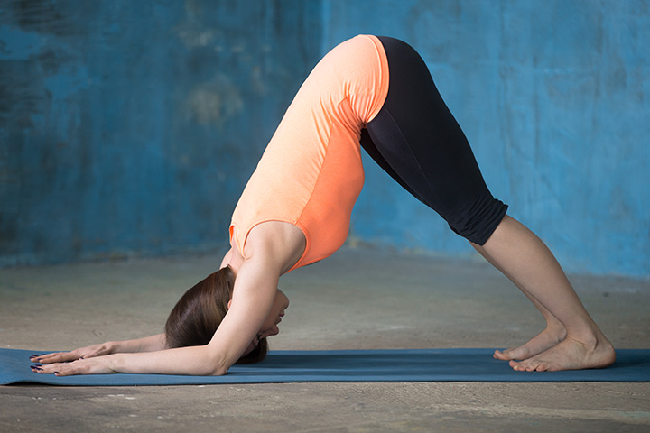 dolphin pose for arms