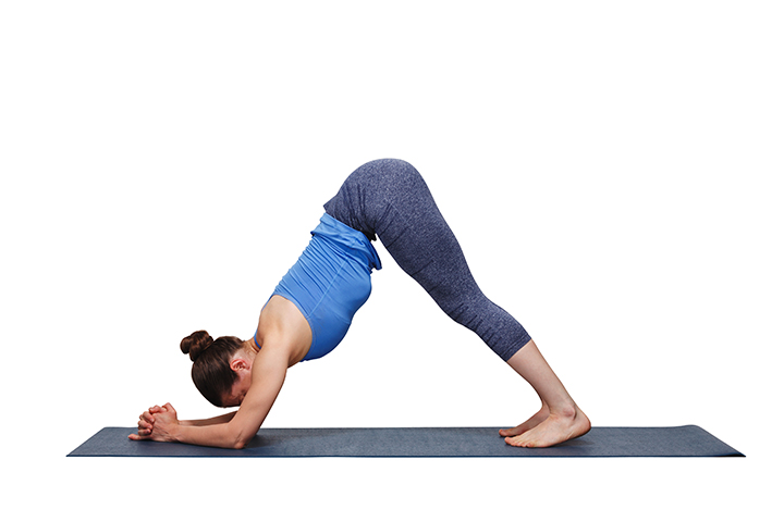 dolphin pose for shoulders