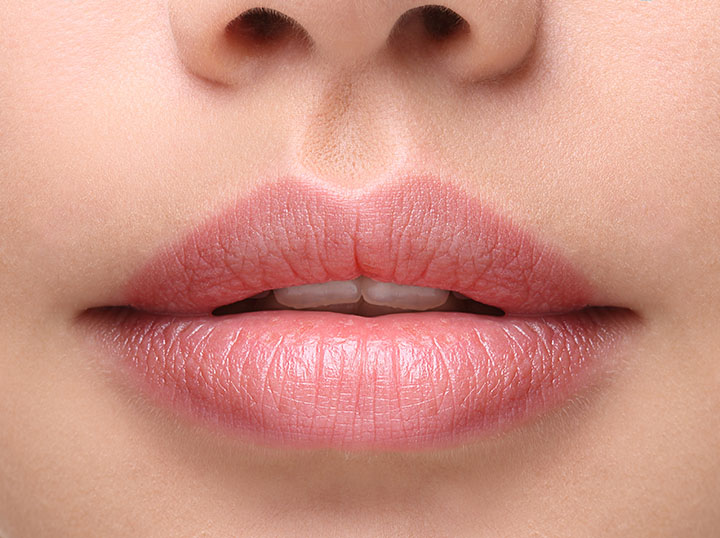 partition lips for lip liner
