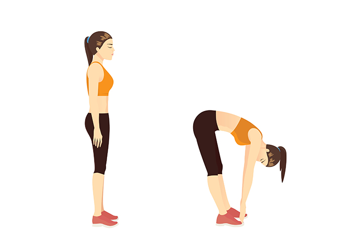 standing toe touches for belly fat