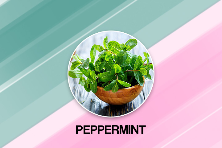 pippermint for fast plooping