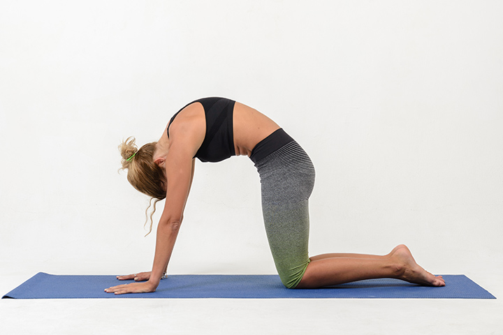 cat pose for upper back pain