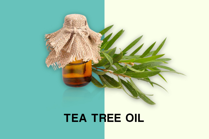 tea tree oil for oily hair